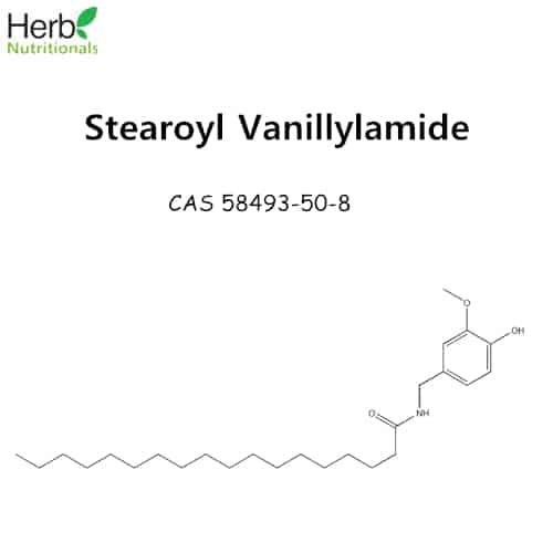 stearoyl vanillylamide molecular structure