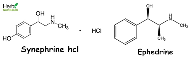synephrine hcl vs ephedrine