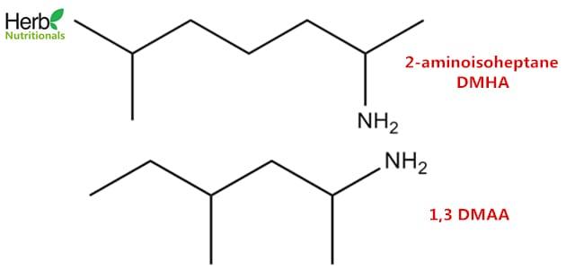 2-aminoisoheptane-DMAA-structure